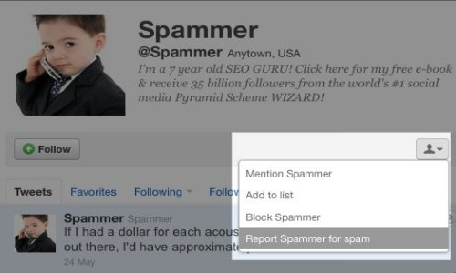 How to Report a Spammer
