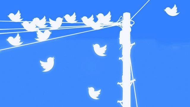 editorialized-tweet-test