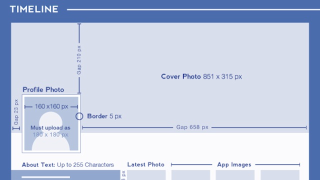 social media design infographic