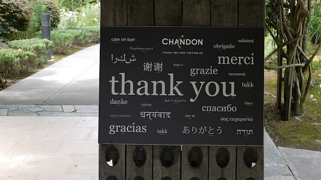 How to Do Cross-Lingual Social Campaigns, According to Global Experts