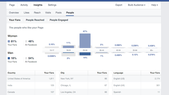 Facebook Insights Audience Terms