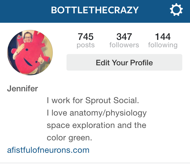 Writing a bio for instagram