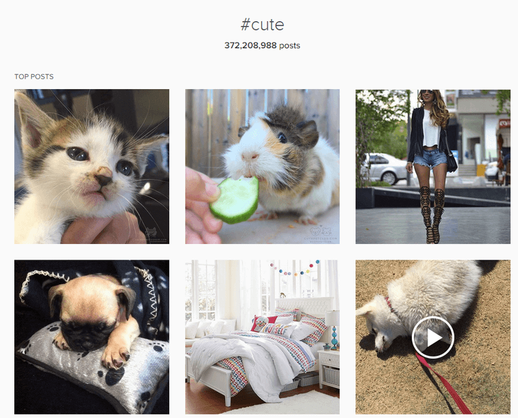 Instagram Hashtag Cute