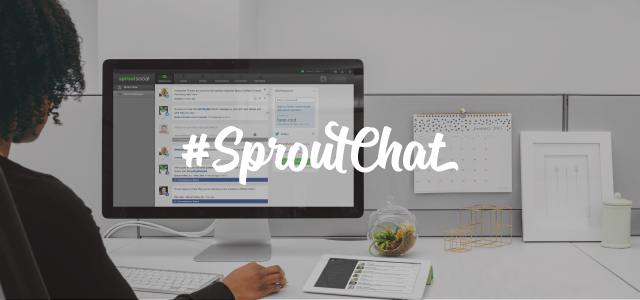 SproutChat6-insights
