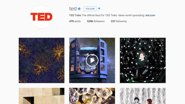 TED Instagram