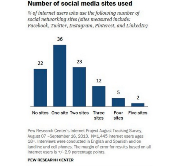 internet users pew research example