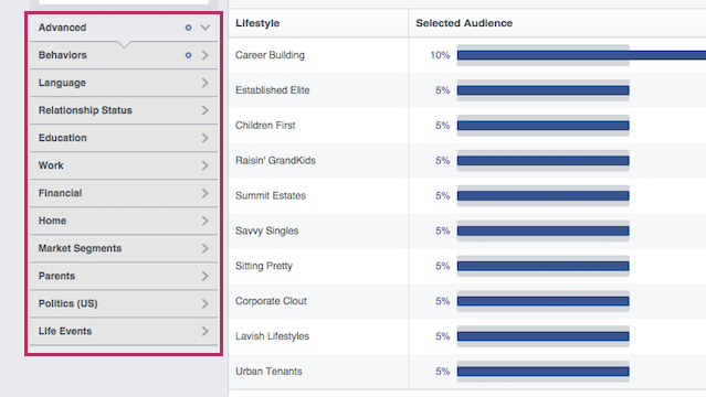 facebook audience insights advanced example
