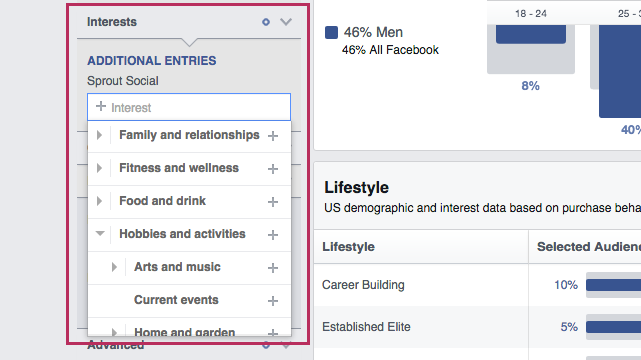 facebook audience insights example