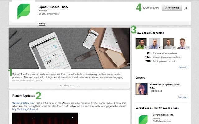 LinkedIn Company Page Overview