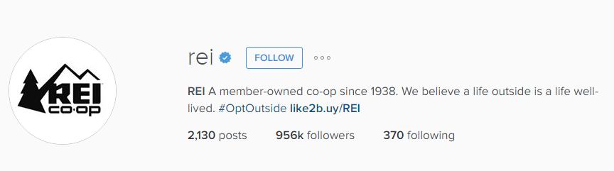 REI Instagram Bio