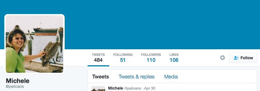 pelicans twitter example