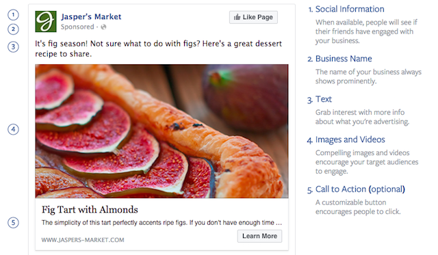 Anatomy Facebook Ad