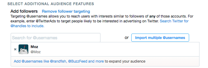 Twitter Ads Audience