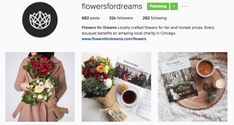 flowers for dreams instagram profile
