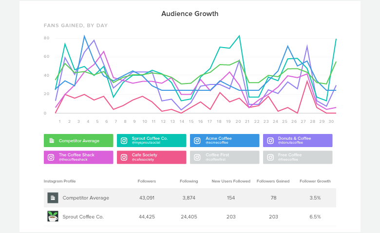 Instagram Audience Growth Report