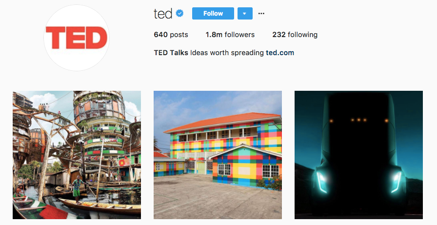 ted instagram bio