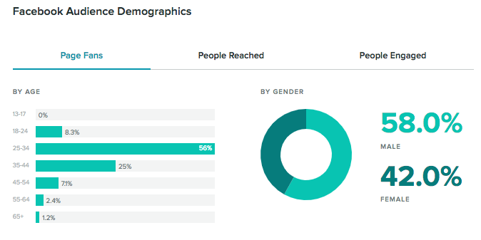 facebook audience demographics report