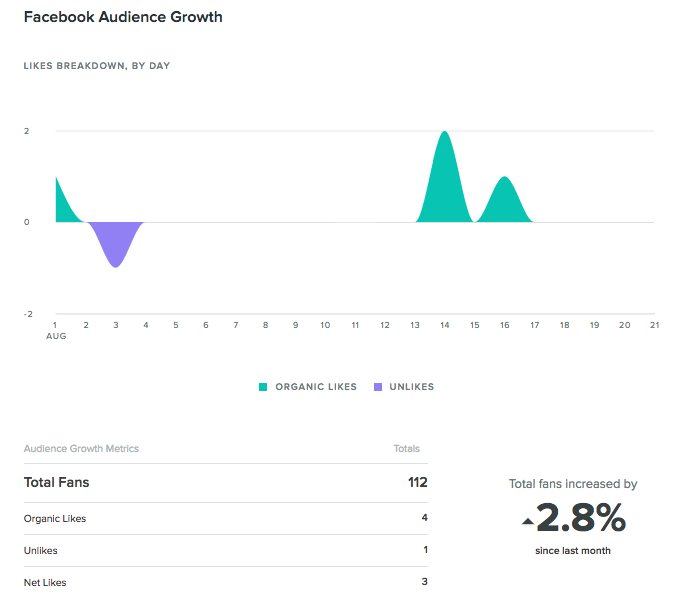 facebook audience growth report