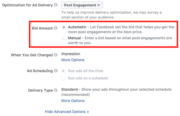 facebook advanced options bidding example