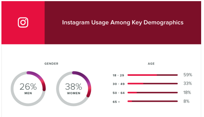 instagram demographic graphic