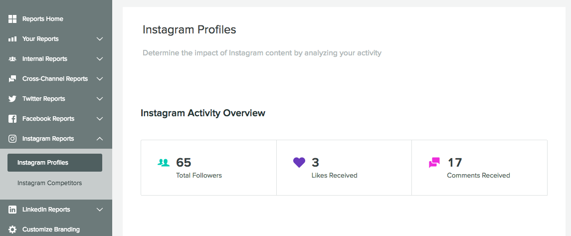 instagram profiles report
