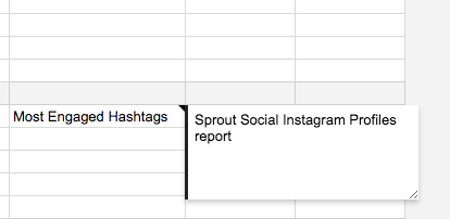 social media audit notes