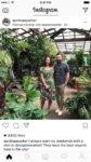 instagram brand partnership example