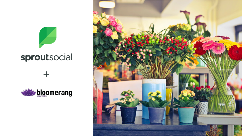 Bloomerang blog header