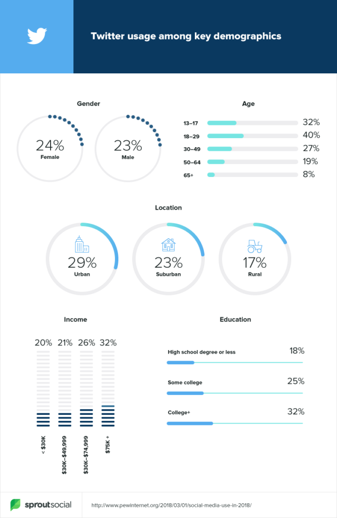 twitter demographics infographic - twitter stats