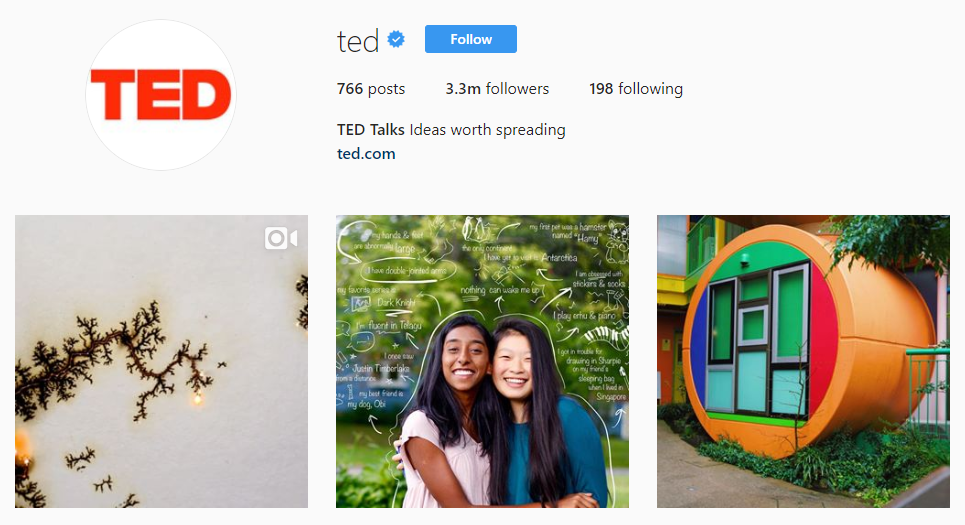 Minimalist Instagram bios are popular for bigger brands