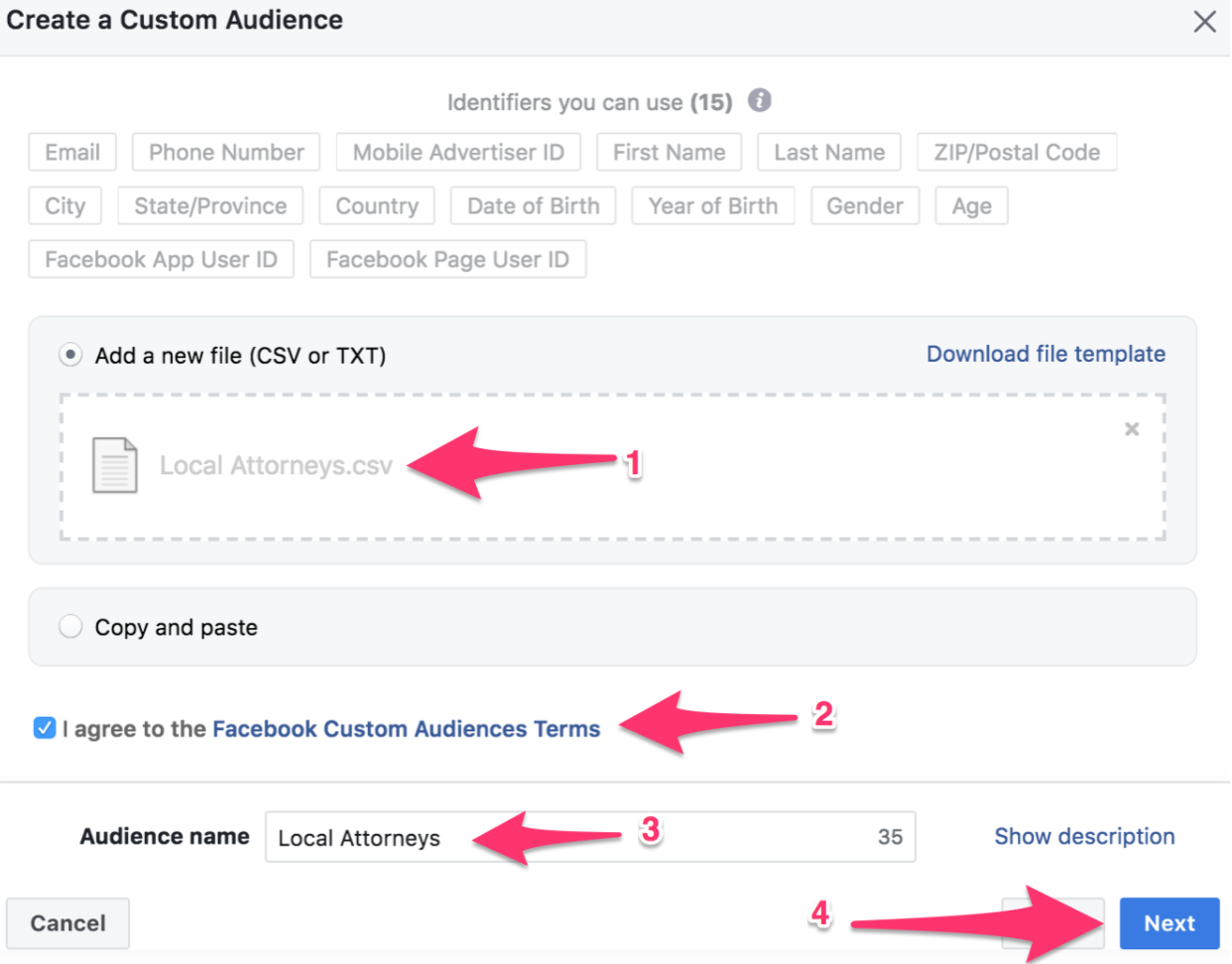 create a custom audience example