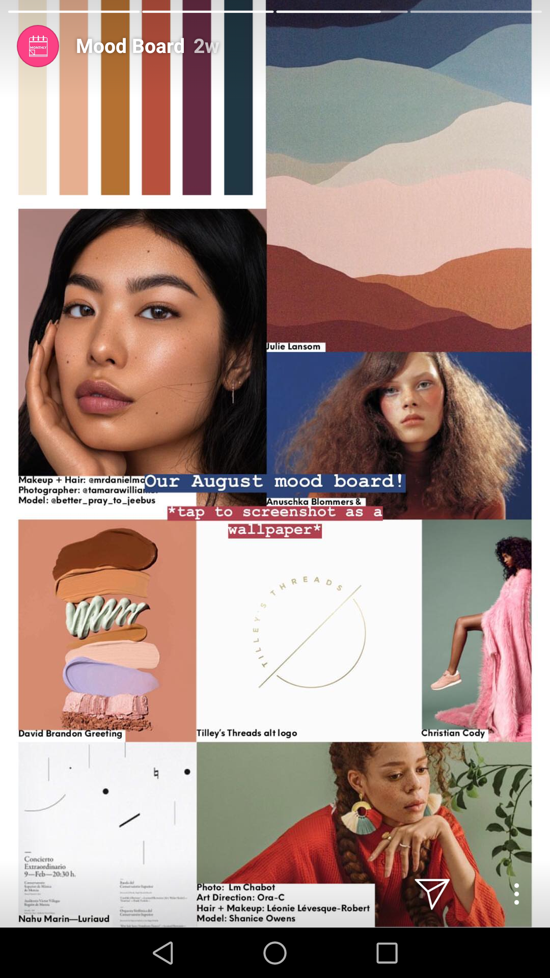 "Mood boards and ""inspo"" posts are ideal for Stories"