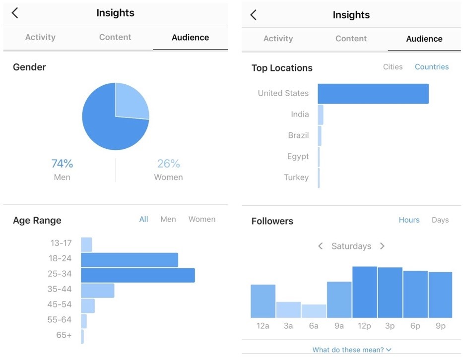 Screenshot of the data available on Instagram Insights