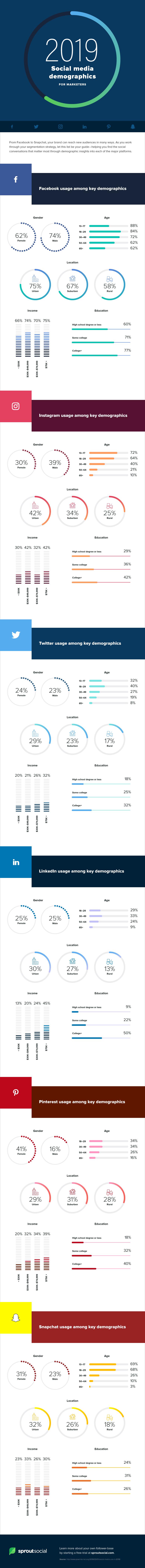 social media demographics 2019