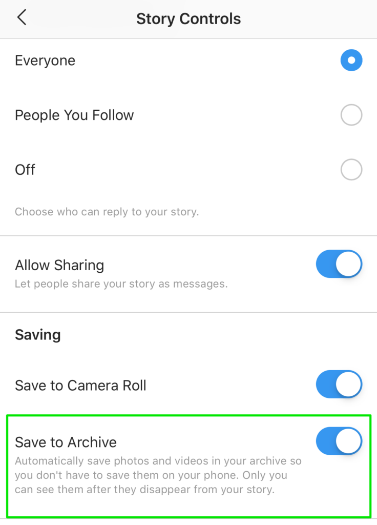 story options allow you to save an archive of stories on instagram