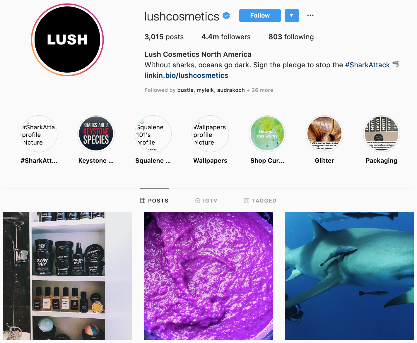 Lush on Instagram - best brands to follow