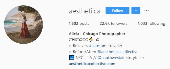 Aesthetica Instagram bio