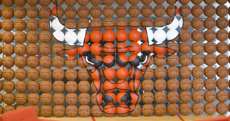 Chicago Bulls image