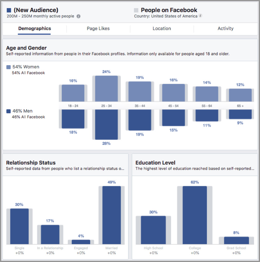 Facebook audience info