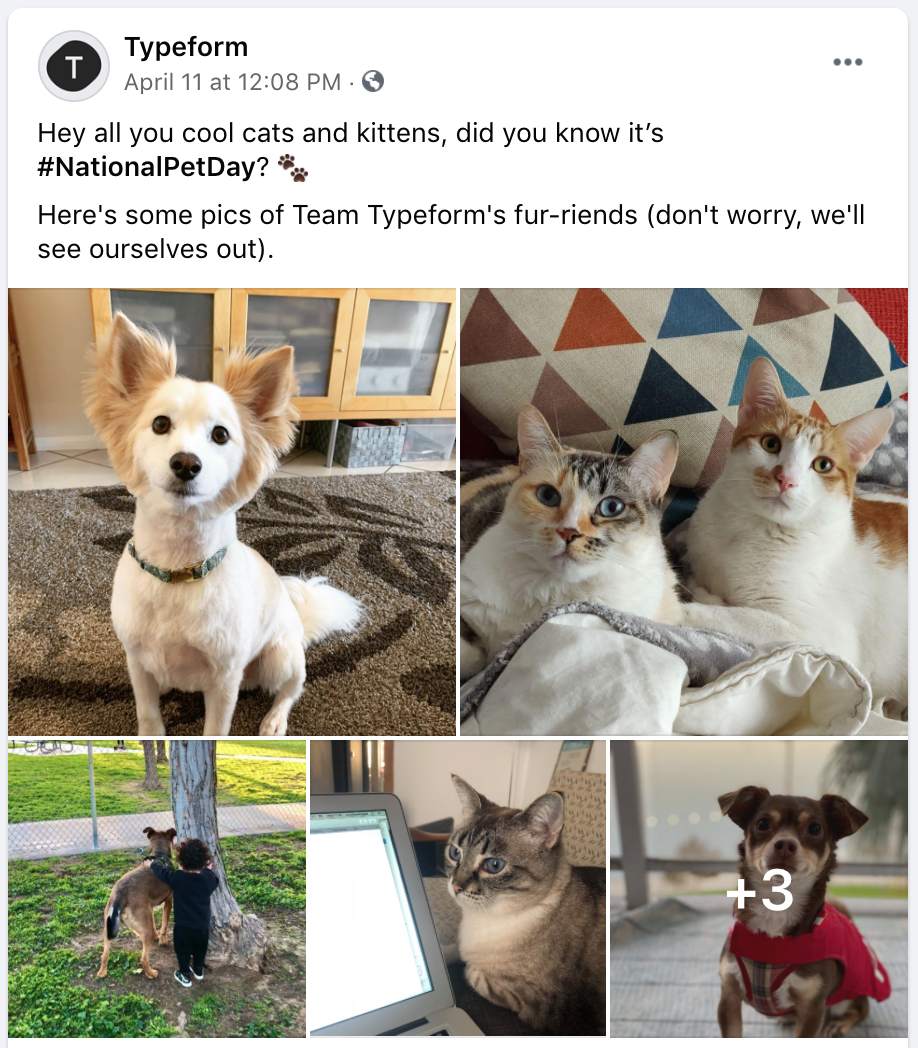 facebook post ideas - typeform sharing behind-the-scenes photos