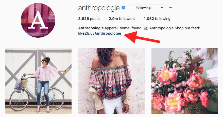 instagram link in bio example
