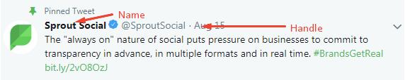 twitter handle example